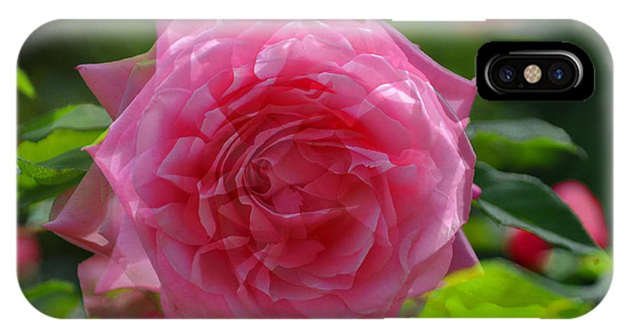 Teresa Blanton IPhone X Case featuring the photograph Pink Puzzled Rose by Teresa Blanton
