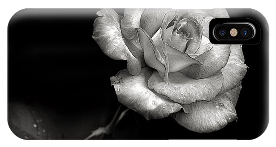 Flower IPhone X Case featuring the photograph Pink Rose In Black And White by Endre Balogh