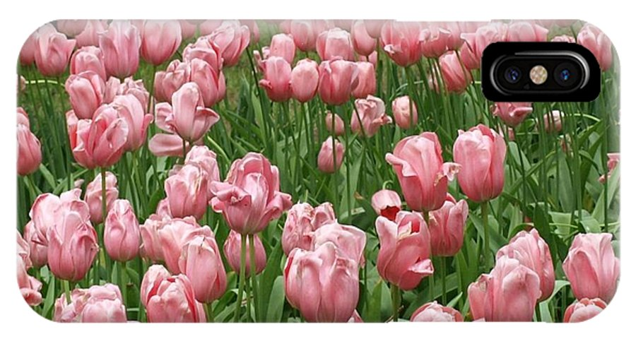 Flowers IPhone X Case featuring the photograph Pink Tulips 2 by Larry Krussel