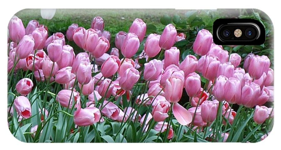 Flowers IPhone X Case featuring the photograph Pink Tulips 3 by Larry Krussel