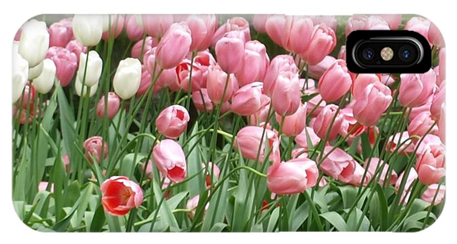 Flowers IPhone X Case featuring the photograph Pink Tulips by Larry Krussel