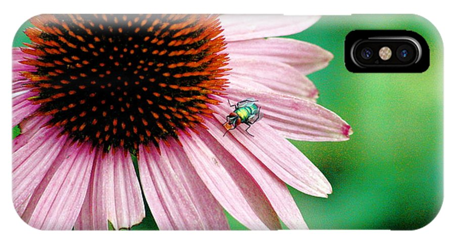 IPhone X Case featuring the photograph Pinking Shears by Trish Hale
