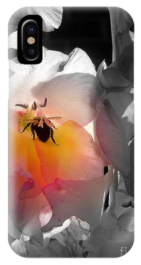 Flowers IPhone X Case featuring the photograph Pollen Time by Donna Bentley