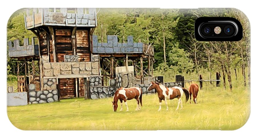 Landscapes IPhone X Case featuring the photograph Ponies And A Castle by Roland Stanke