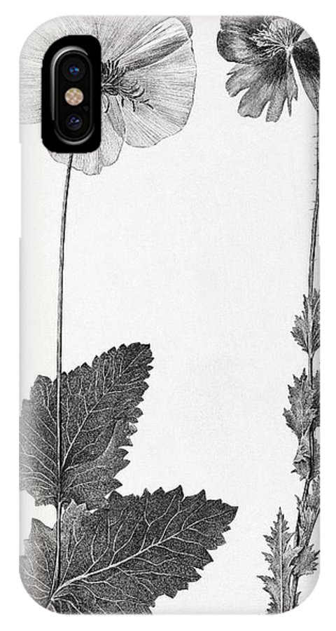 Poppy IPhone X Case featuring the photograph Poppy, 19th Century Artwork by Middle Temple Library