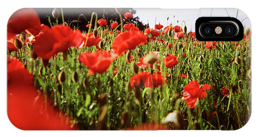 Landscape IPhone X Case featuring the photograph Poppy Stars by Olivier De Rycke