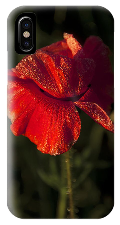 Flowres IPhone X Case featuring the photograph Poppy by Svetlana Sewell