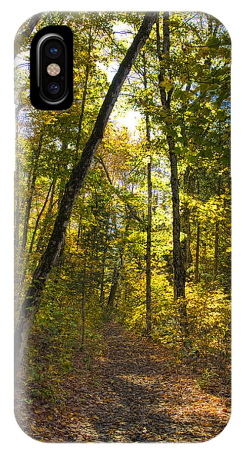Nature IPhone X / XS Case featuring the photograph Portal Through The Woods by Jo-Anne Gazo-McKim