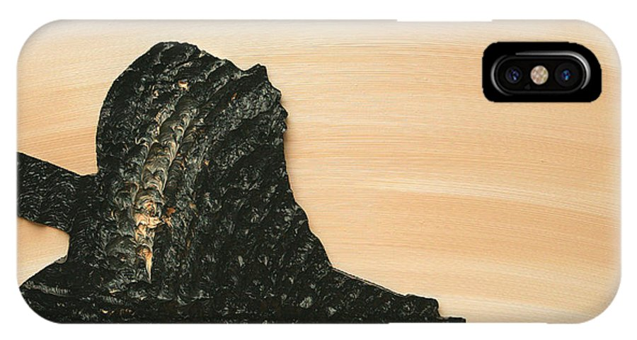 Beige IPhone X Case featuring the painting Portrait Variation In Beige - Willhelm Tell by Antonio Wehrli