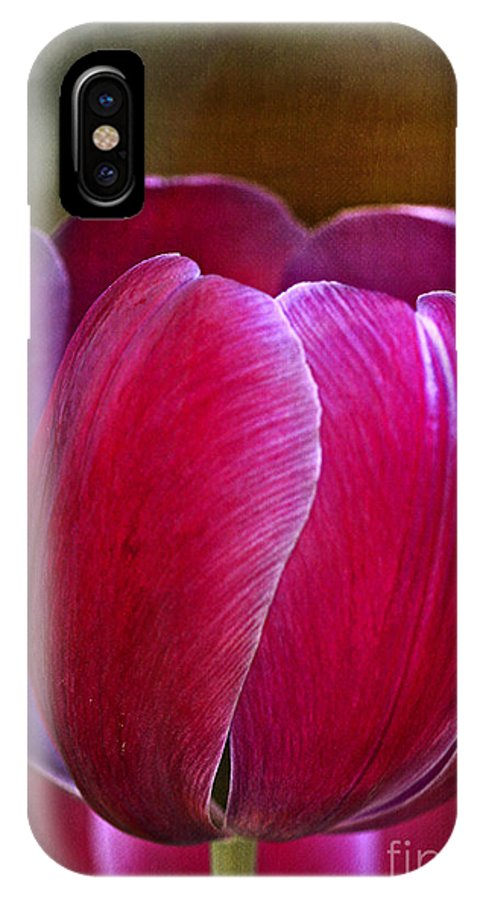 Tulip IPhone X Case featuring the photograph Pretty In Pink by Deborah Benoit