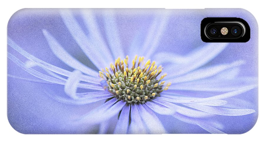 Flower IPhone X Case featuring the photograph Purple Aster Flower by Neil Overy