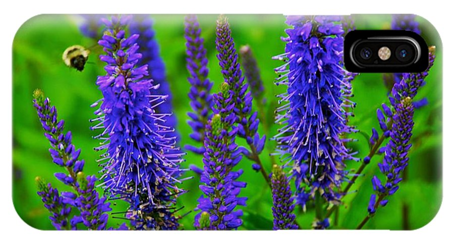 Flowers IPhone X Case featuring the photograph Purple Blue Yellow Green by Eric Tressler