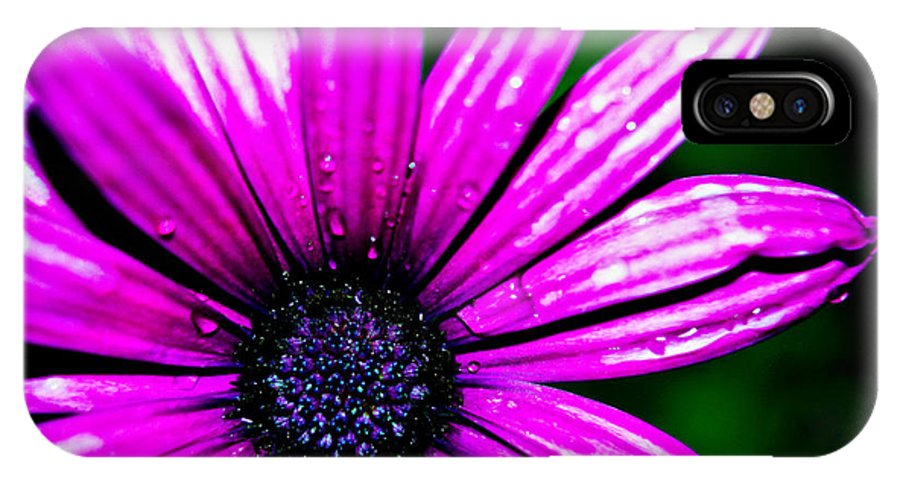 Macro IPhone X Case featuring the photograph Purple Dew by Joshua Dwyer