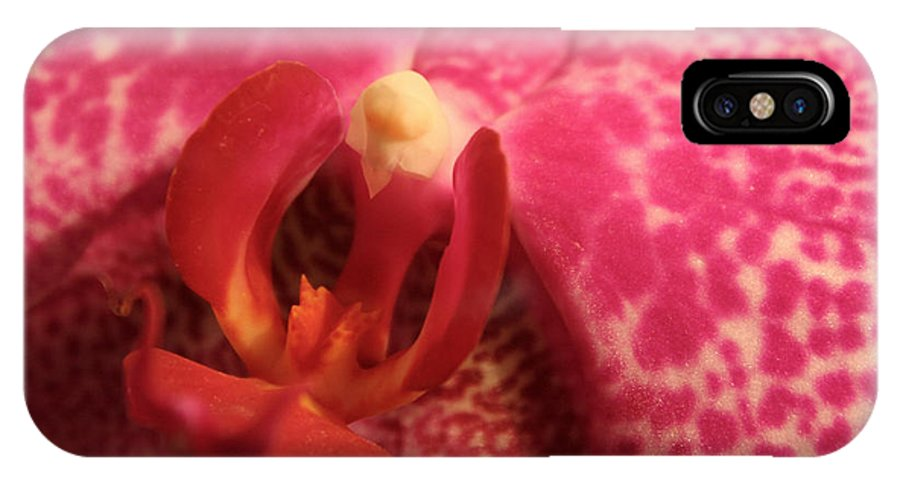 Orchid IPhone X Case featuring the photograph Purple Orchid Heart by Michael Waters