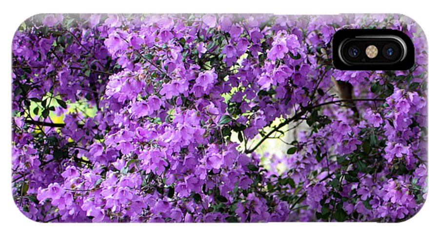 Purple Flowers IPhone X / XS Case featuring the photograph Purple Screen Square by Carol Groenen