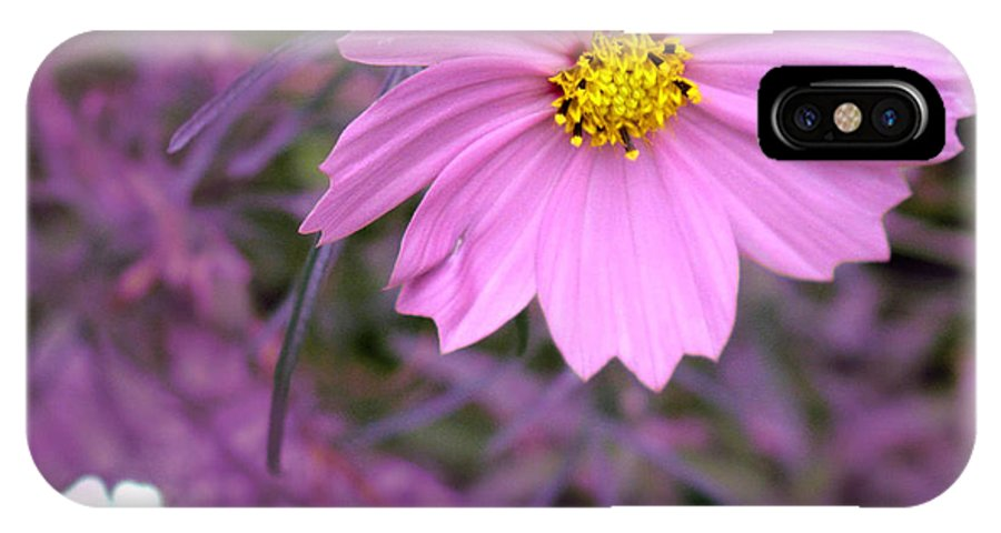 Flower IPhone X Case featuring the photograph Purple Statement by Ian MacDonald