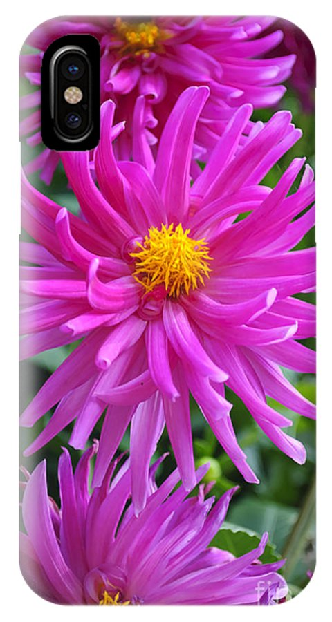 Flower IPhone X Case featuring the photograph Purpolis by Diego Re