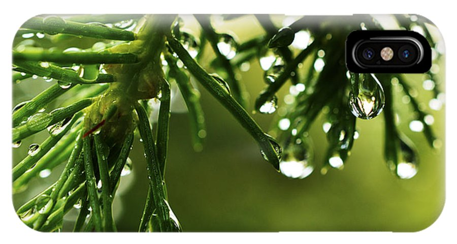 Green IPhone X Case featuring the photograph Raindrops On Pine Needles by Thomas R Fletcher