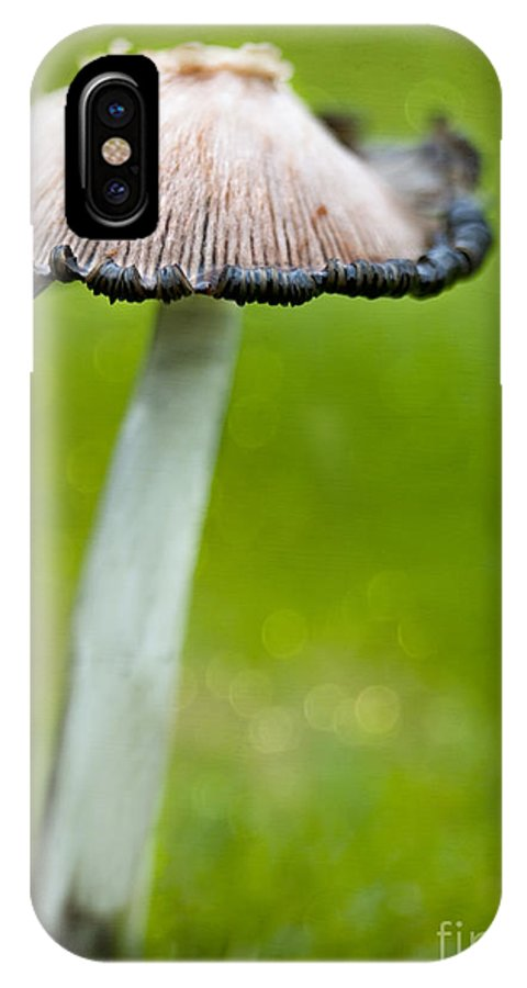 Mushroom IPhone X / XS Case featuring the photograph Rainy Day Mushroom by Susan Gary