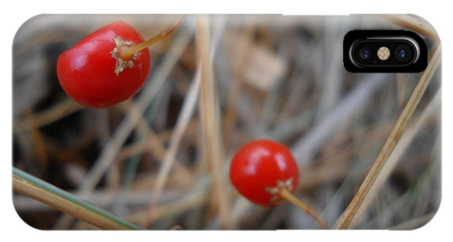 Close Up IPhone X Case featuring the photograph Red Asparagus Berries by Kent Lorentzen
