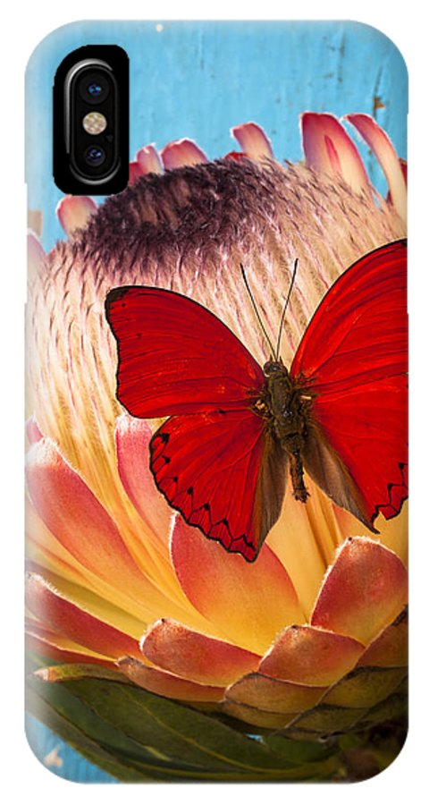 Protea IPhone X Case featuring the photograph Red Butterfly On Protea by Garry Gay