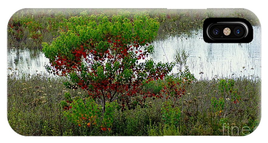 Nature IPhone X Case featuring the photograph Red In Green by Paul Wilford