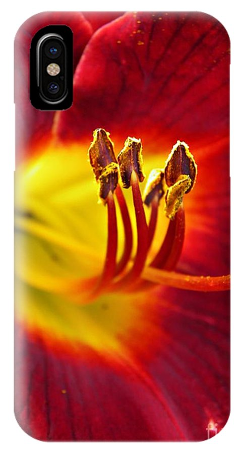 Red Lily Center 3 IPhone X Case featuring the photograph Red Lily Center 3 by Sarah Loft