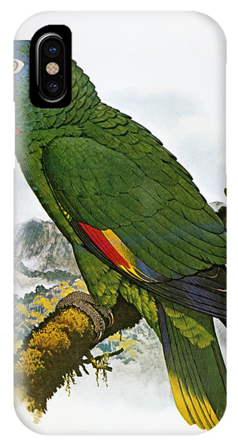 Amazon IPhone X Case featuring the photograph Red-necked Amazon Parrot by Granger