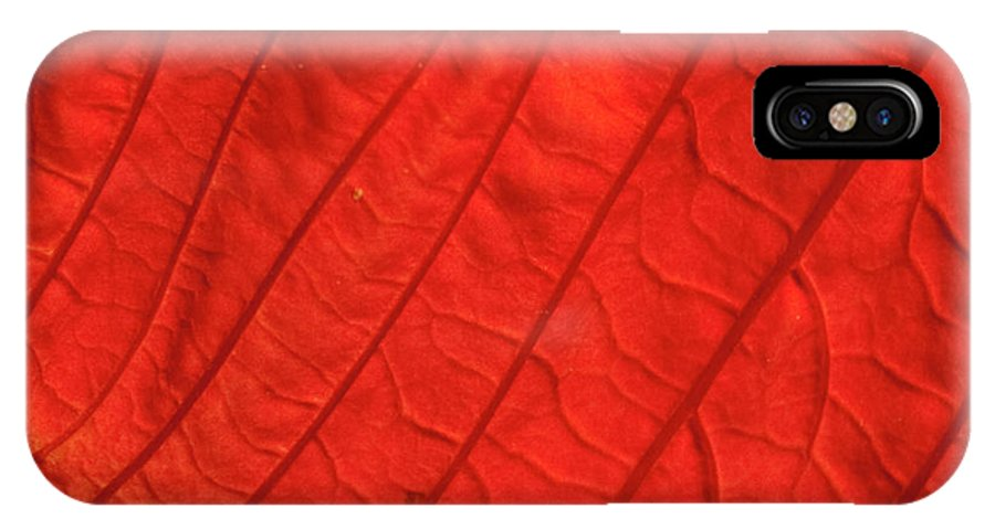 Poinsettia IPhone X Case featuring the photograph Red Poinsettia Leaf by Michael Waters