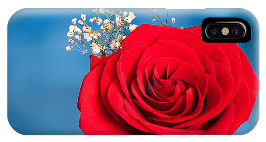 Red Rose On Blue IPhone X Case featuring the photograph Red Rose And Baby Breath by Randall Branham