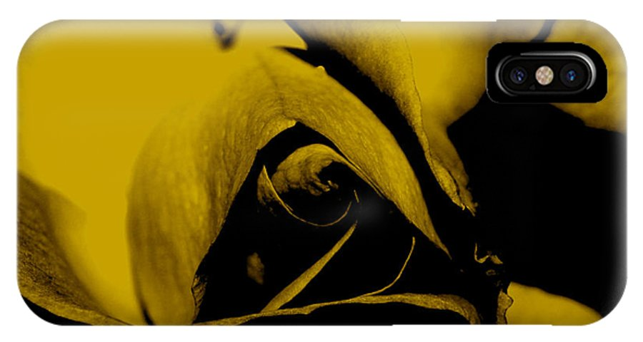 Nature IPhone X Case featuring the photograph Red Rose Close Up 2011 In Yellow by Robert Morin