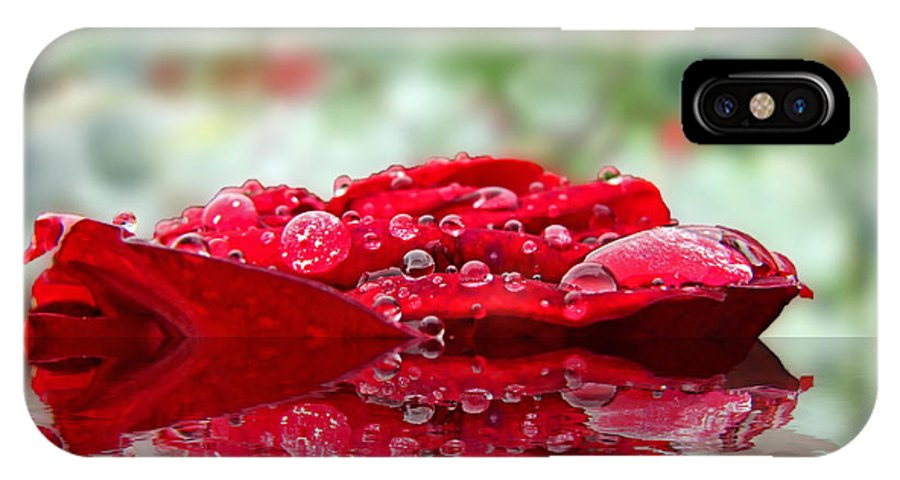 Plants IPhone X Case featuring the digital art Red Rose Reflections by Debbie Portwood
