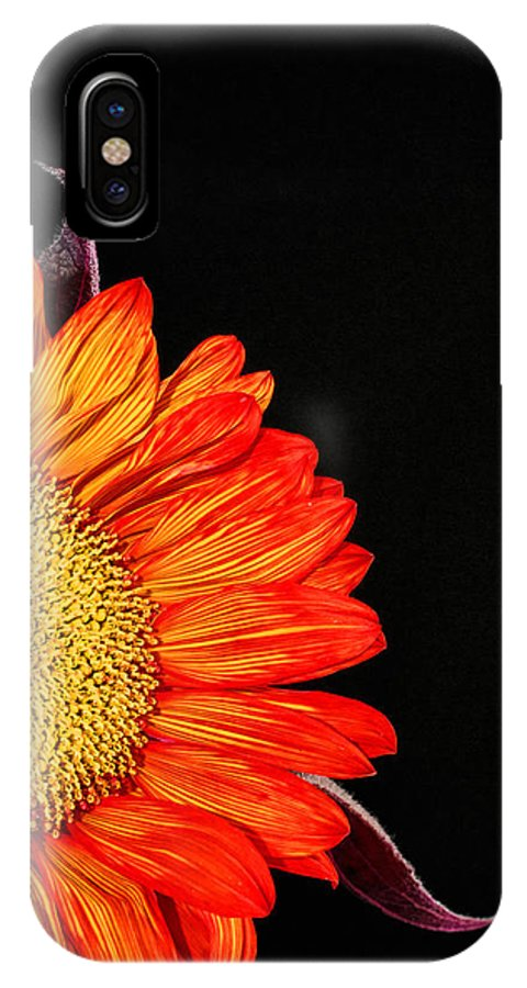 Red Sunflower IPhone X Case featuring the photograph Red Sunflower IIi by Saija Lehtonen