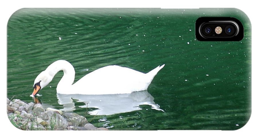 Wildlife IPhone X Case featuring the photograph Reflection Of A Swan by Terrilee Walton-Smith