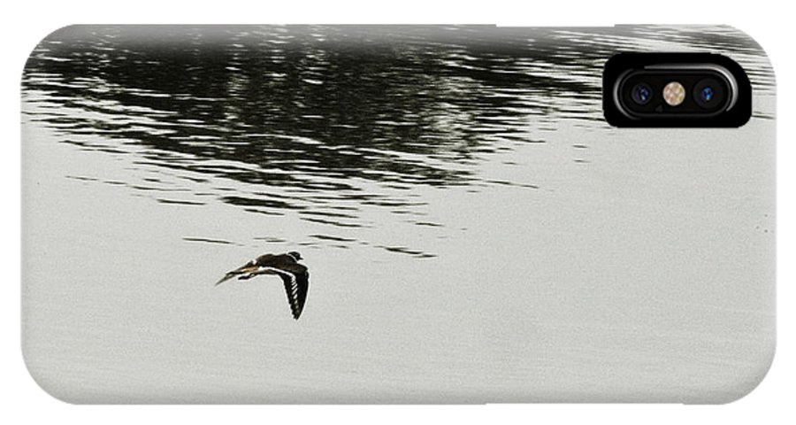 Bird In Flight Over Lake-reflection IPhone X / XS Case featuring the photograph Reflection Of Flight by Douglas Barnard