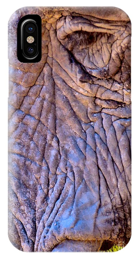 Elephant IPhone X Case featuring the photograph Remind Me by Art Dingo
