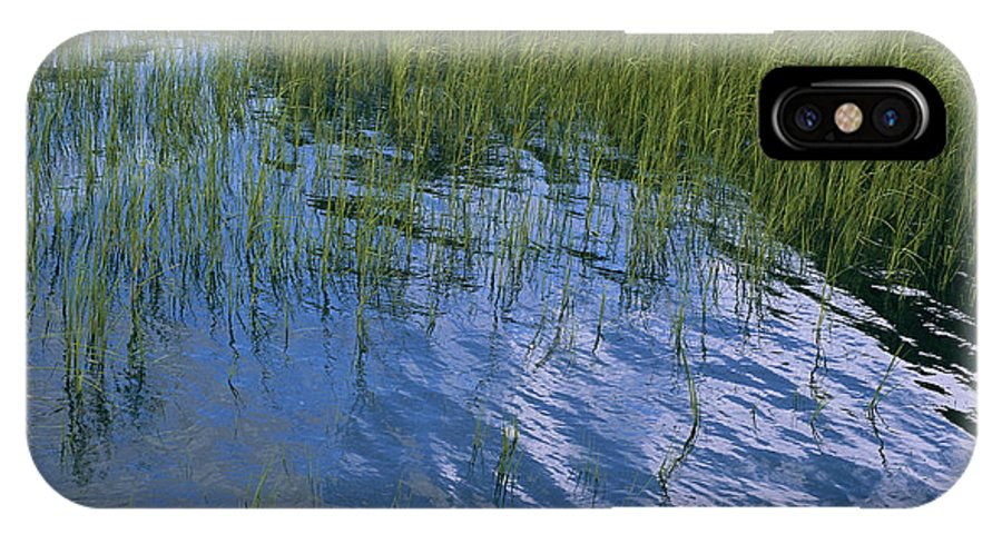 United States Of America IPhone X / XS Case featuring the photograph Rippling Water Among Aquatic Grasses by Heather Perry