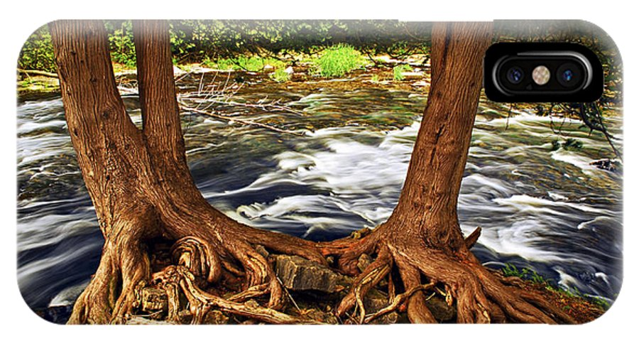 River IPhone X Case featuring the photograph River And Roots by Elena Elisseeva