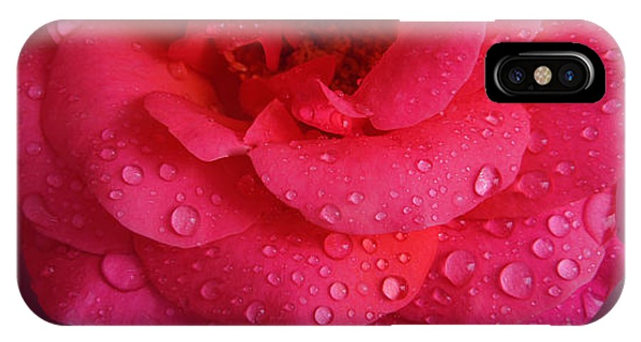 Colette IPhone X Case featuring the photograph Rose For You by Colette V Hera Guggenheim