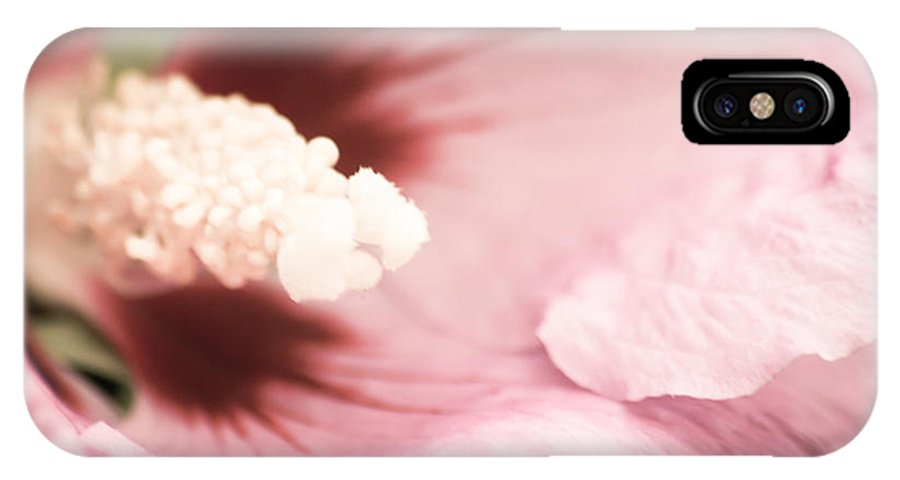 Aloha IPhone X Case featuring the photograph Rose Of Sharon by Hannes Cmarits