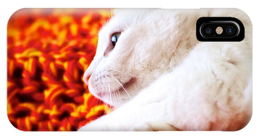 Cat IPhone X Case featuring the photograph Sadie Relaxing by JM Photography