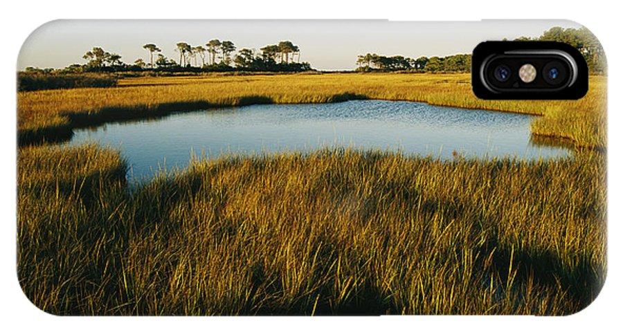 North America IPhone X / XS Case featuring the photograph Salt Marsh, Assateague Island, Virginia by Skip Brown