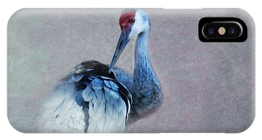 Sandhill Crane IPhone X Case featuring the photograph Sandhill Crane 2 by Betty LaRue