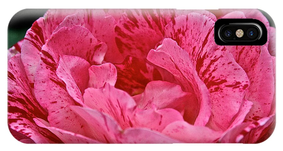 Floral IPhone X Case featuring the photograph Scentimental by Susan Herber