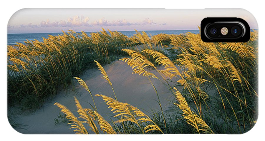 North America IPhone X / XS Case featuring the photograph Sea Oats, Dunes, And Beach At Oregon by Skip Brown