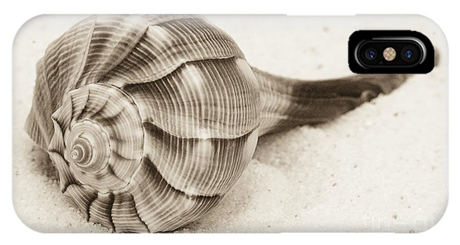 Shell IPhone X / XS Case featuring the photograph Sepia Shell by Jim And Emily Bush