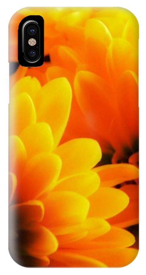 Flower IPhone X Case featuring the photograph Shine A Little Light On Me by Leah Moore