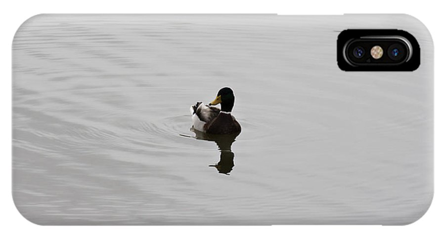 Duck On Lake IPhone X / XS Case featuring the photograph Silent Waters by Douglas Barnard
