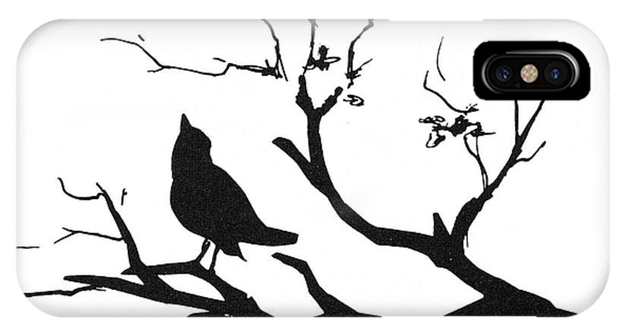 Biology IPhone X Case featuring the photograph Silhouette Bird On Branch - To License For Professional Use Visit Granger.com by Granger