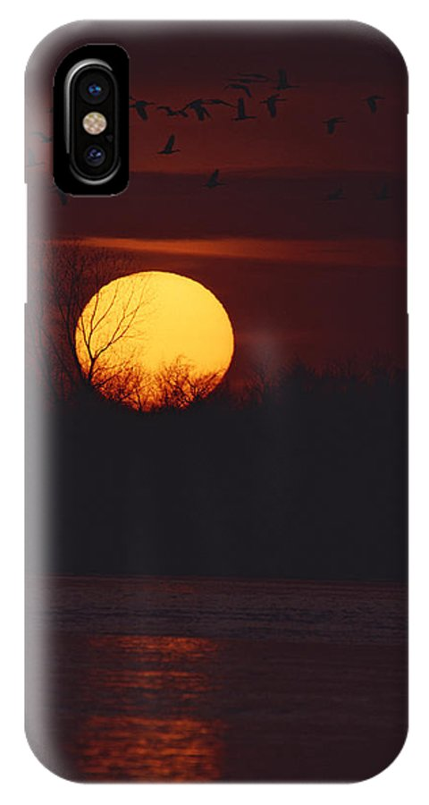 United States Of America IPhone X / XS Case featuring the photograph Silhouetted Sandhill Cranes Fly by Tom Murphy